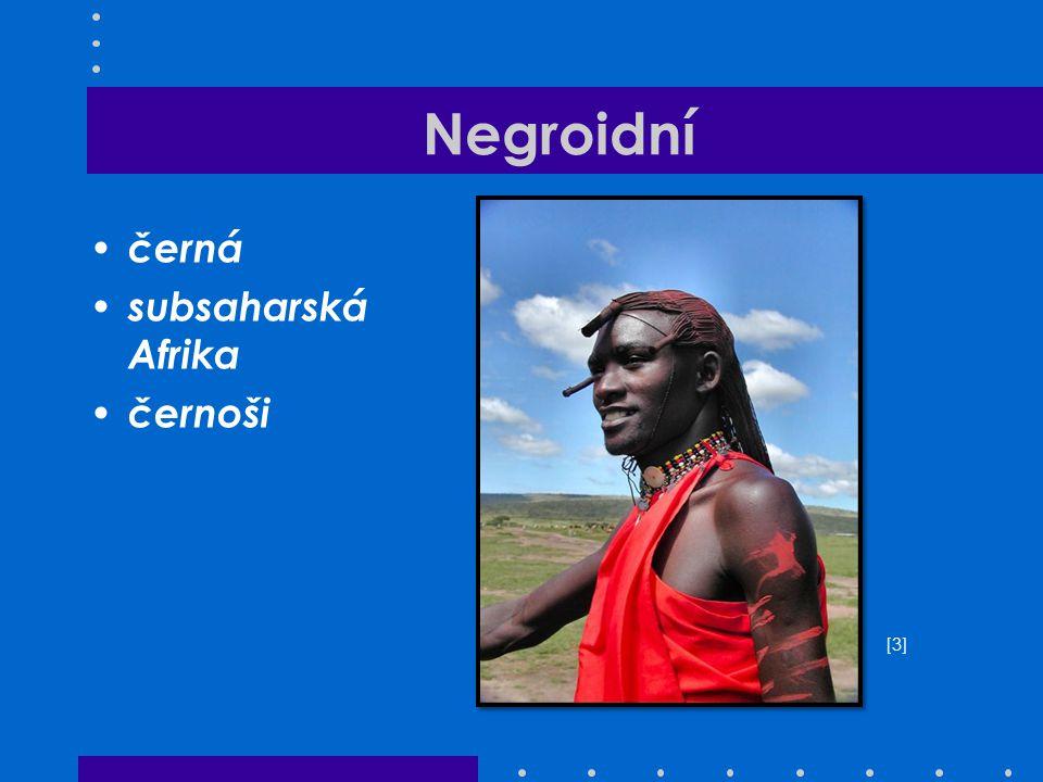 Negroidní černá subsaharská Afrika černoši [3]